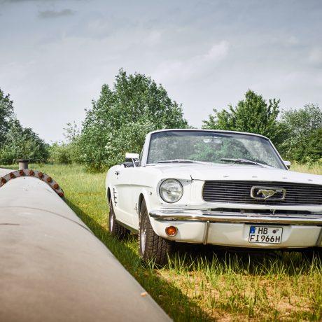 Mustang_Verleih_Bremen_28